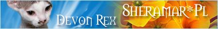 Sheramar - Devon Rex